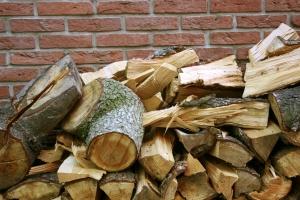 Zasady sprzedaży drewna w Polsce