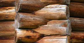 Jak sprawdzić jakość drewna w konstrukcji domu?